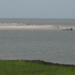 Gullah/Geechee SEA and ME: Truly a Cultural Journey