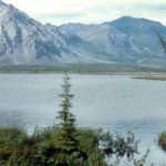 A Black Environmental Group Joins Native Alaskans in Calling for Protections of the Arctic Refuge
